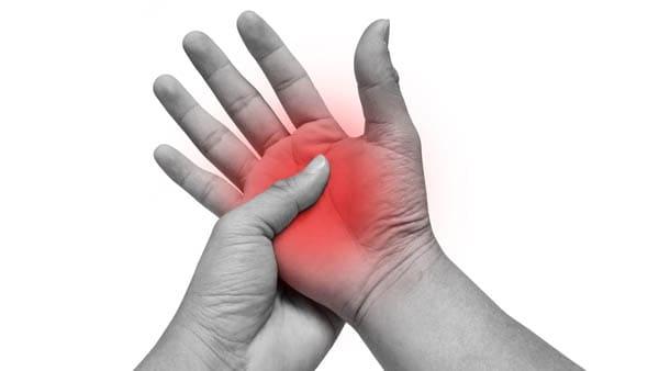 anatomie de la main anatomie main muscles et tendons dr waitzenegger